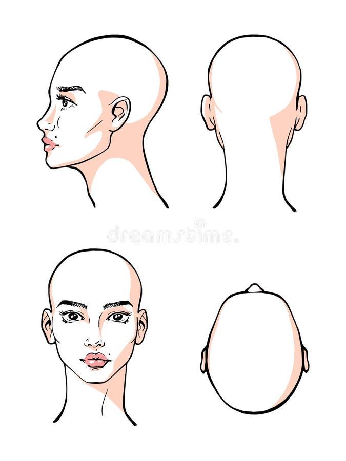 Beautiful woman face vector, illustration, contour, design. Beautiful woman face vector, illustration stock illustration