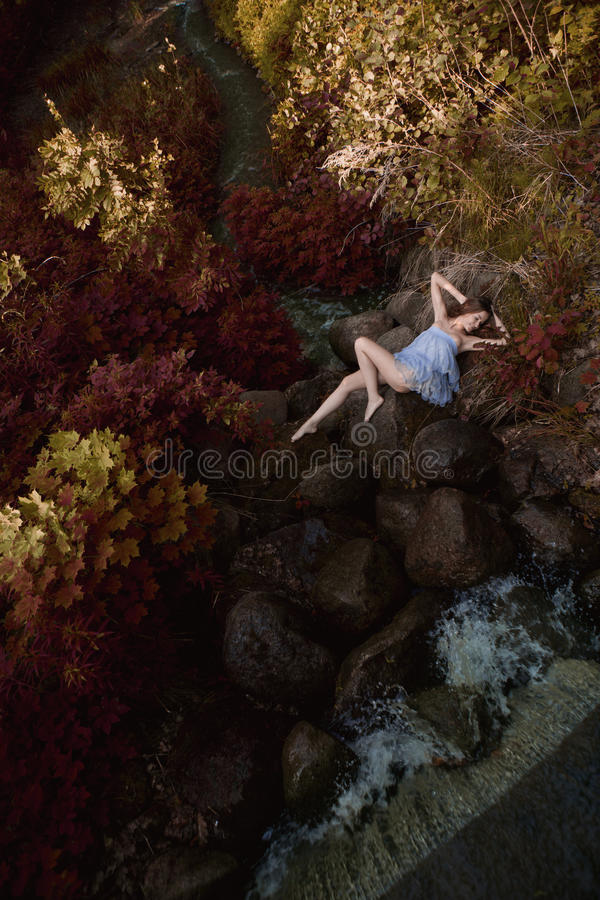 Beautiful woman in fairy forest royalty free stock image