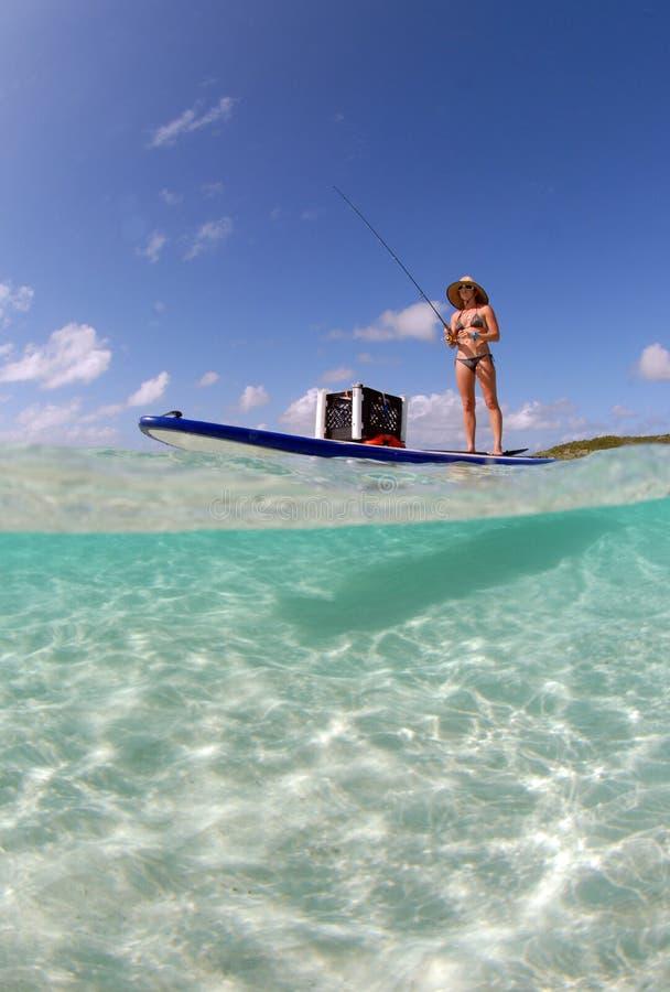 Beautiful woman fishing from paddle board stock image