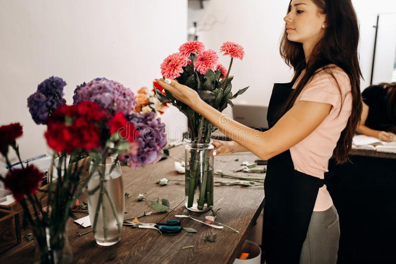 Beautiful woman florist in a black apron touches a pink chrysanthemums in vase stock photo