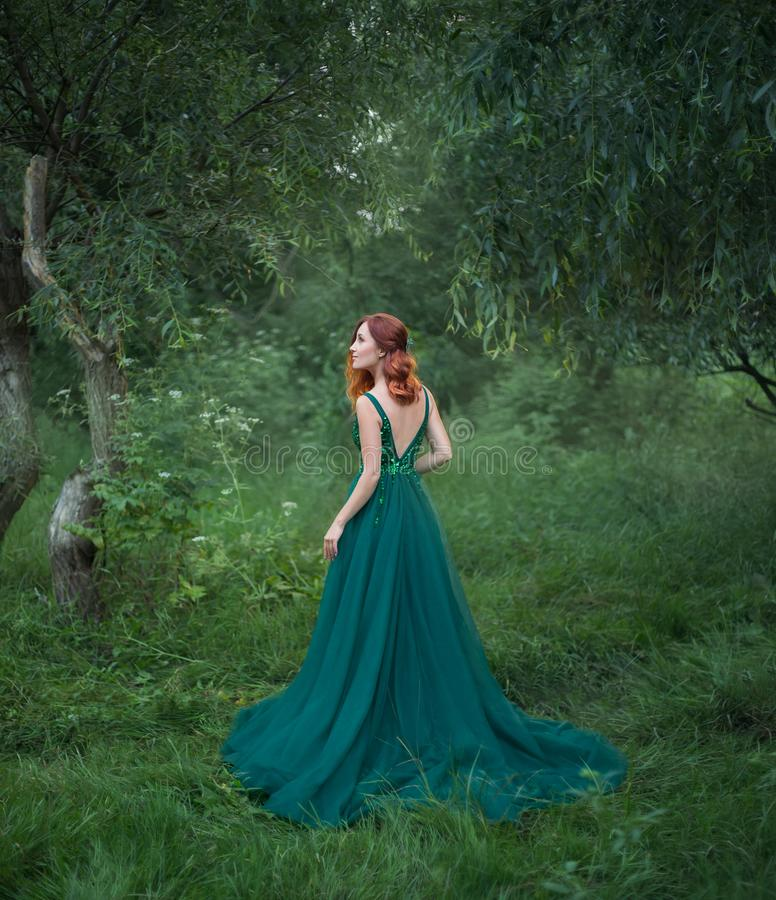 Beautiful woman in the forest is standing with her back to the camera. stock photography