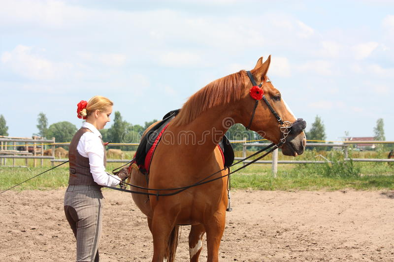 Download Beautiful Woman Getting Horse Ready For The Riding Stock Image - Image of rider, mare: 27781161