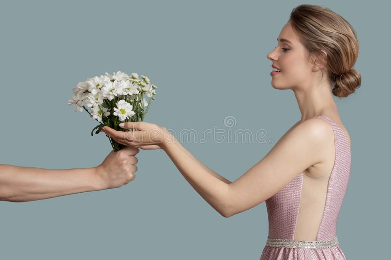 Beautiful woman give chamomile flowers. Blue background stock photography