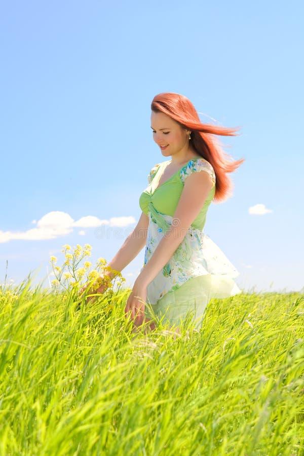 Beautiful woman in green field royalty free stock photo