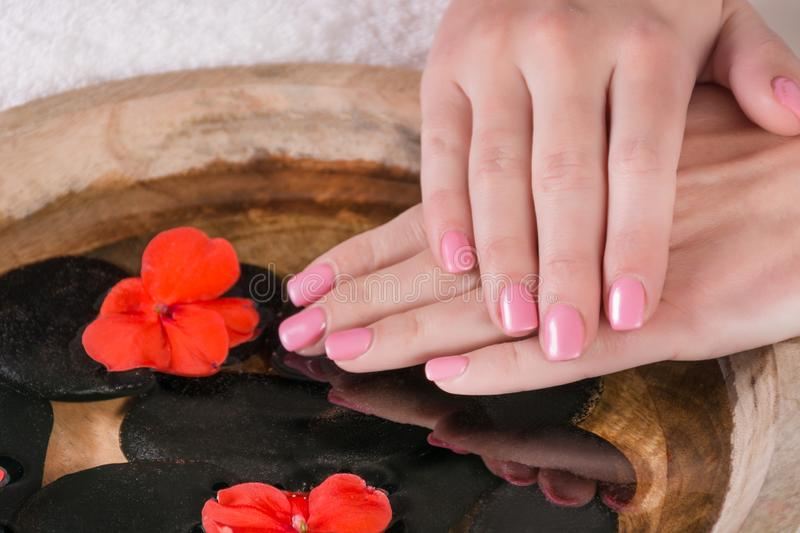 Girl hands with pink gel polish manicure on finger nails above water in bowl. Beautiful woman hands with pink gel polish manicure on finger nails above water stock photos