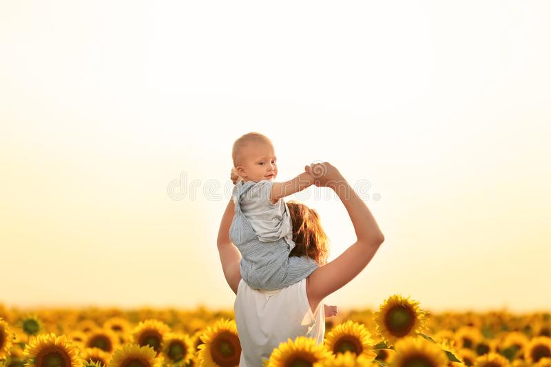 Beautiful woman with her little son in sunflower field on sunny day royalty free stock images