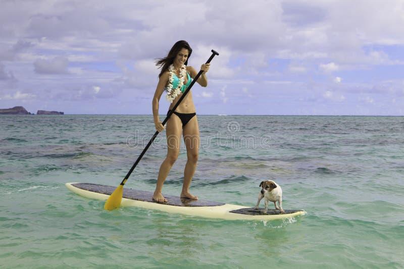 Beautiful woman on her paddle board stock photo