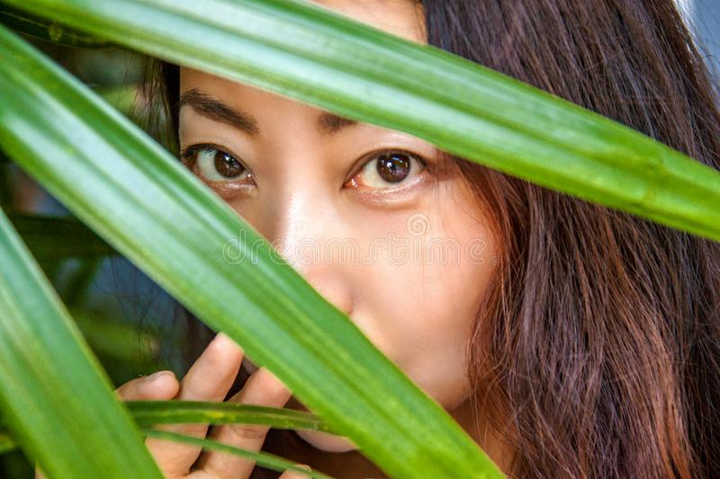A beautiful woman is hiding behind palm leaves. Eastern beauty and skin care. royalty free stock photo