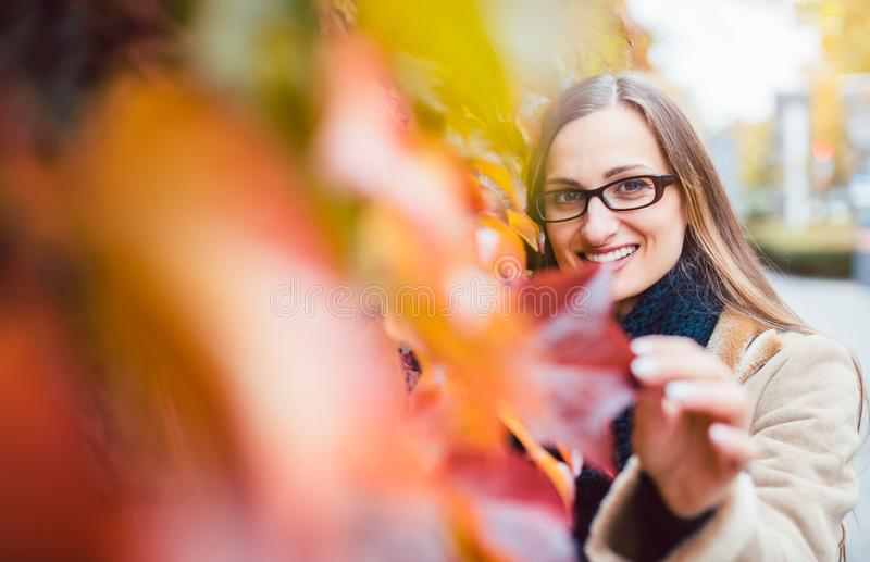 Beautiful woman hiding behind red ivy leaves in fall stock photo