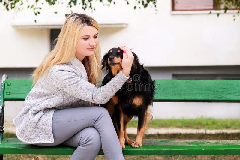 Beautiful woman with his small mixed breed dog sitting and posing in front of camera on wooden bench at city park. royalty free stock images
