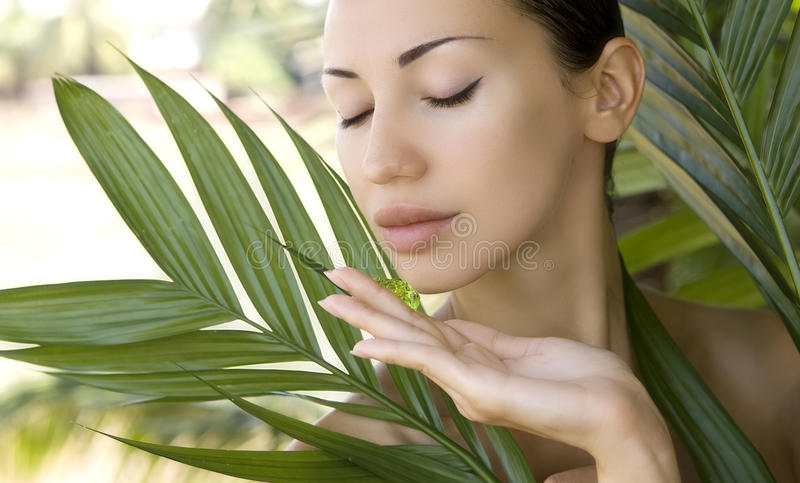 Beautiful woman holding aloe vera gel, skin care and wellness. F. Beautiful caucasian woman holding natural aloe vera facial gel, skin care and wellness. Facial royalty free stock photography