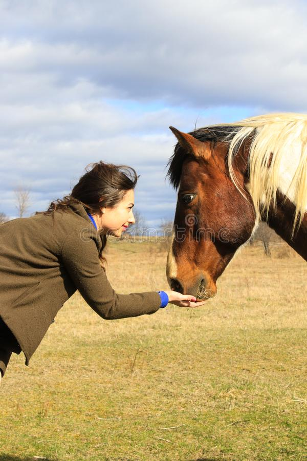Woman and Horse Best Friend Connection stock photos