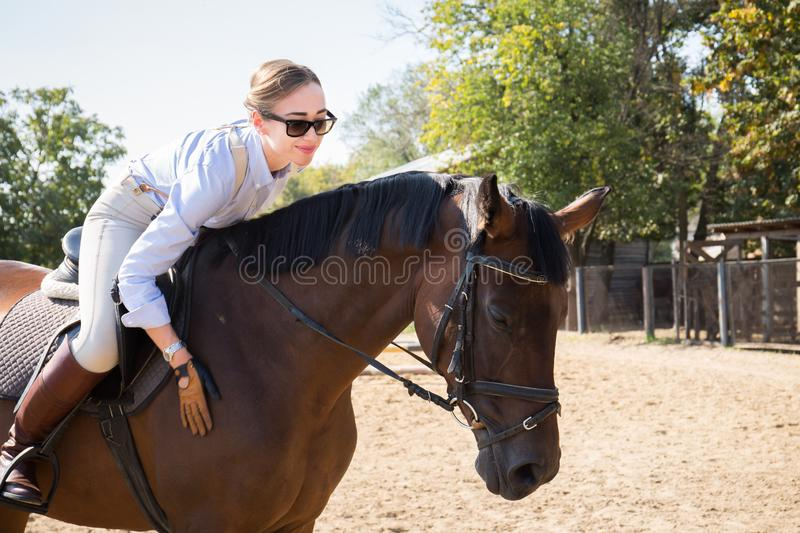 Beautiful woman horsewoman, close-up. Beautiful woman horsewoman riding a horse at the stable royalty free stock photos