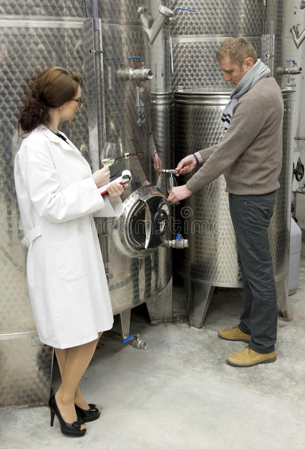 Beautiful woman inspector talking with manager in winery. stock images