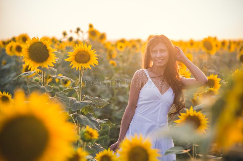 Beautiful woman with long hair in a field of sunflowers in the s royalty free stock photos