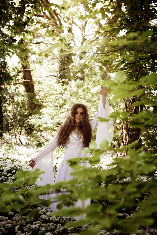 Beautiful woman in long white dress standing in a forest stock photos