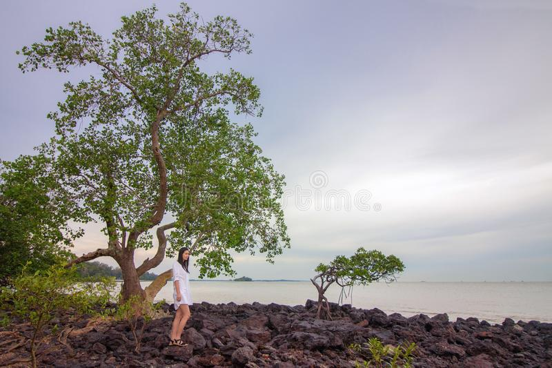 Beautiful woman looking at the scenic view on rocky seashore stock image