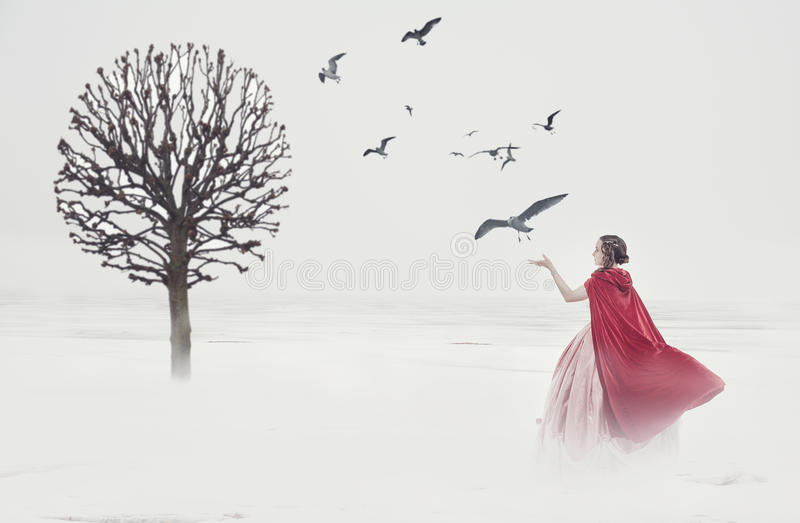 Beautiful woman in medieval dress with birds on foggy field. Beautiful woman in long medieval dress with birds on foggy field royalty free stock image