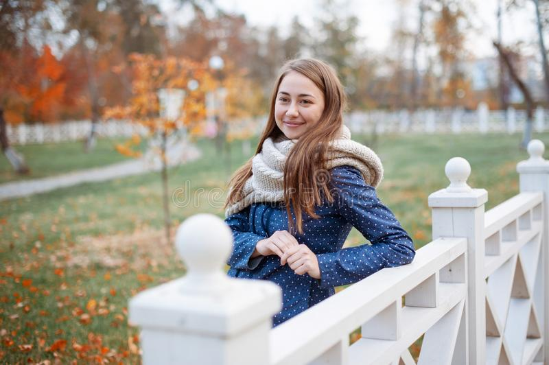 Beautiful woman model poses outdoor in the autumn park with knitten gray scarf. Portrait of smiling girl in blue shirt near the white fence stock image