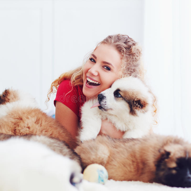 Beautiful woman playing with cute caucasian shepherd puppies, dogs royalty free stock photos