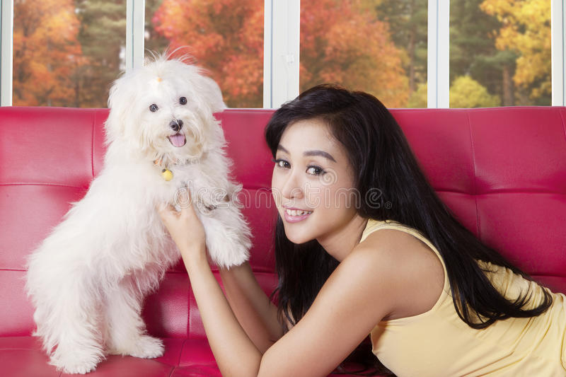 Beautiful woman playing with dog on sofa stock photography