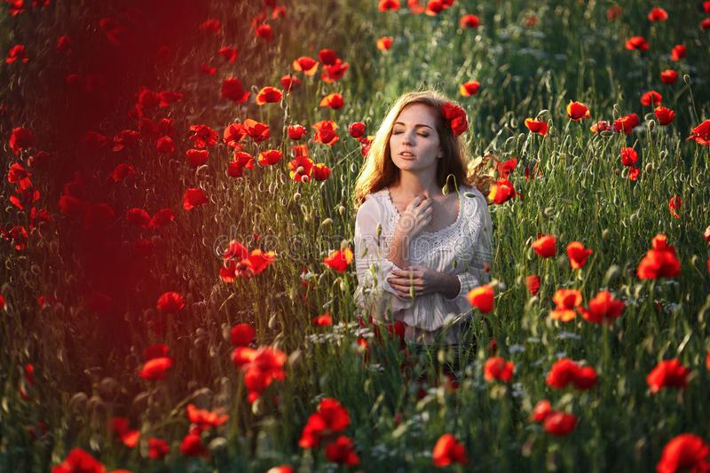 Beautiful woman in a poppy field stock images