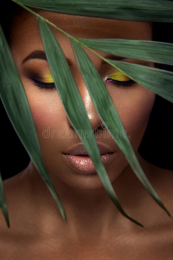 Beautiful woman portrait on black background. Young afro girl posing with green leaves and closed eyes. Gorgeous make up. Pure skin stock images