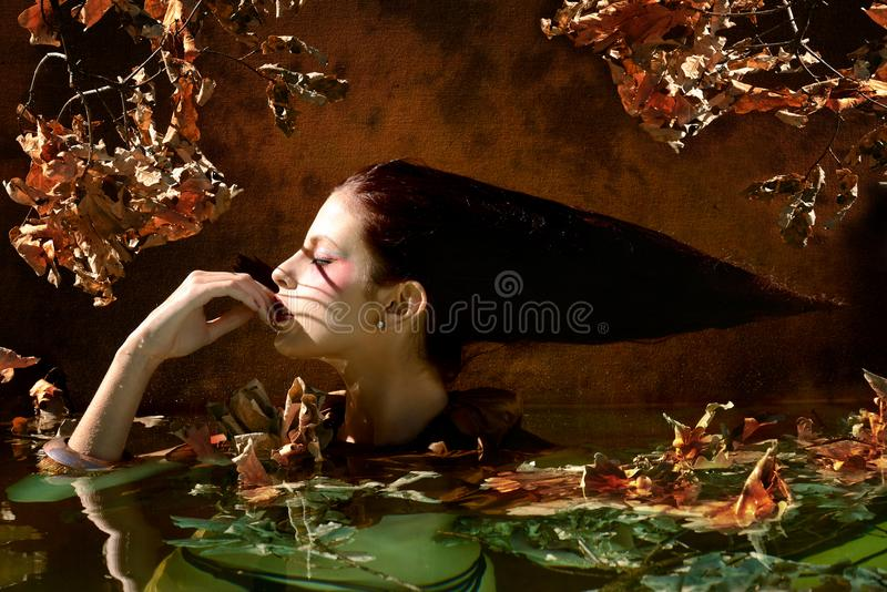 beautiful woman portrait with Leaves and branches in autumn water royalty free stock photography