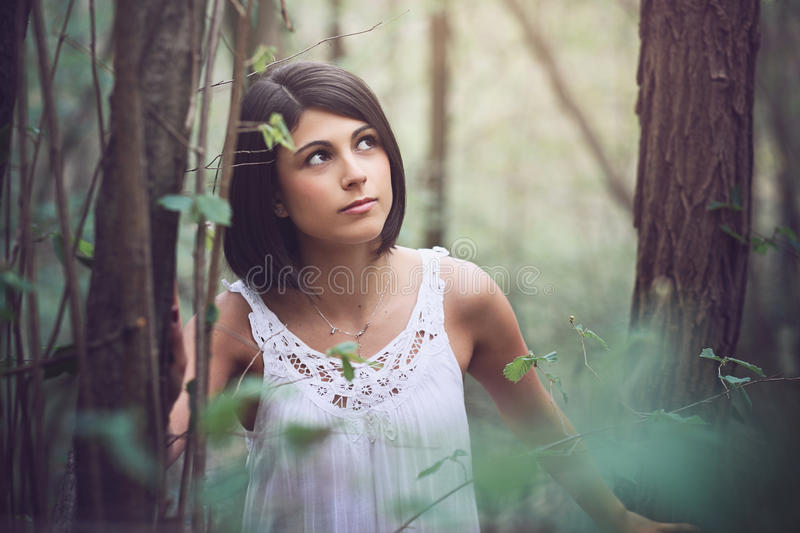 Beautiful woman portrait in the wood. Beautiful woman portrait in soft light forest stock image