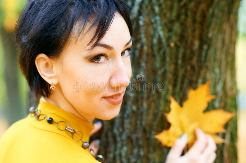 Beautiful woman posing with yellow leaves in autumn city park, fall season stock images