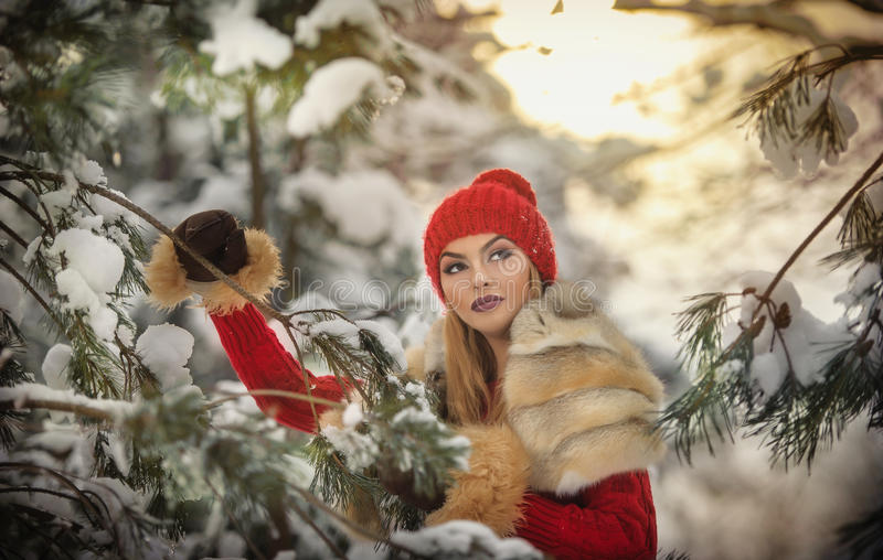 Beautiful woman in red with brown fur cape enjoying the winter scenery in forest. Blonde girl posing under snow-covered branches. Beautiful woman in red with royalty free stock photo