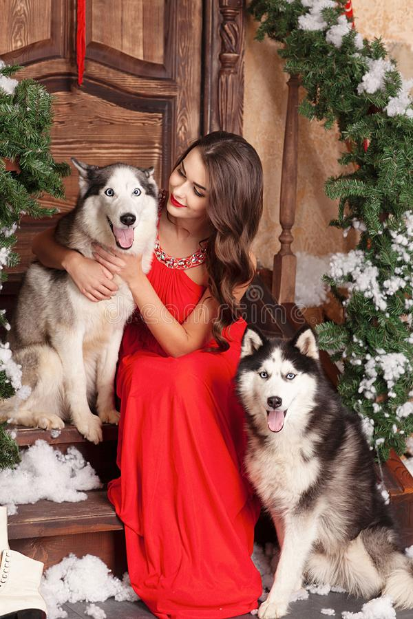 Beautiful woman in red evening dress sitting on the steps with her dog, Husky. on a background of a Christmas decorated room. stock photos