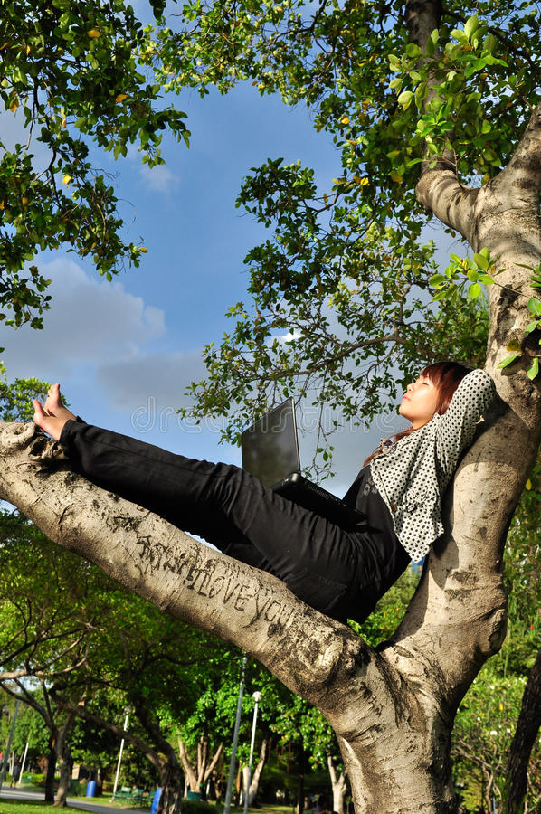 Beautiful woman resting on the tree with laptop stock image