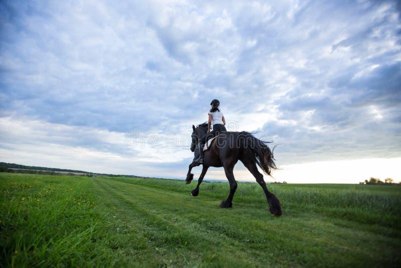 Beautiful woman riding a black friesian horse. royalty free stock photography