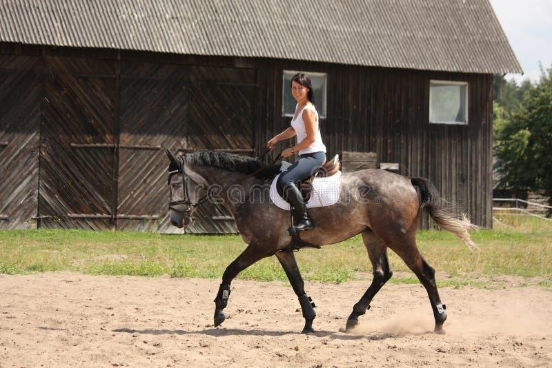 Beautiful woman riding gray horse stock image