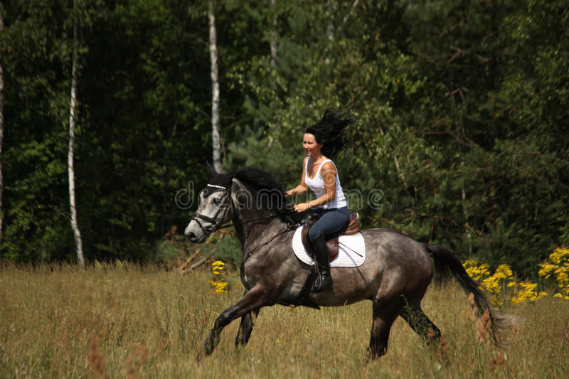 Beautiful woman riding gray horse in the forest stock photo