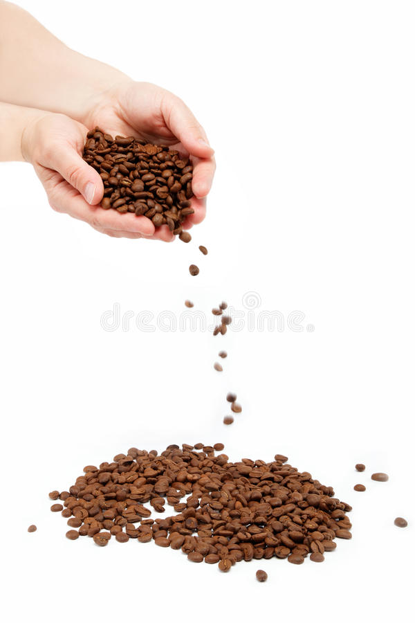 Beautiful woman's hand holding the coffee beans. royalty free stock photos