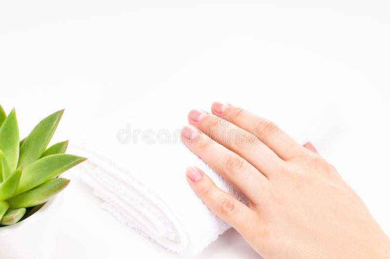 Beautiful woman hands. Spa and manicure. Soft skin, the concept of nail care. royalty free stock photography