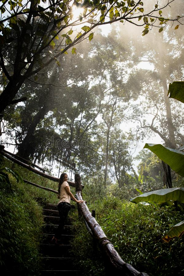 Beautiful woman on stairs on a foggy and wet rainforest path in Chiang Mai & x28;Thailand stock images