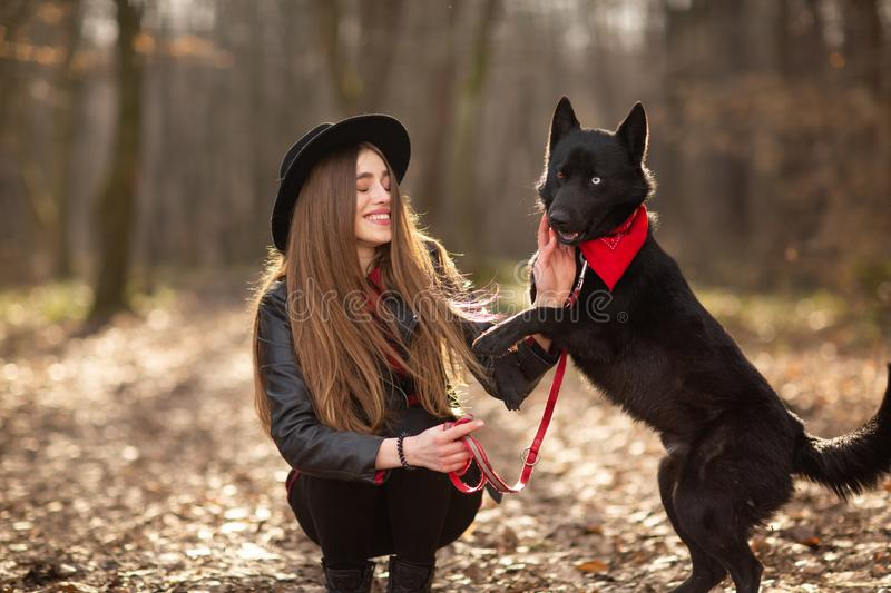 Beautiful woman stroking her dog outdoors. Pretty girl playing and having fun with her pet by name Brovko Vivchar.  royalty free stock photos