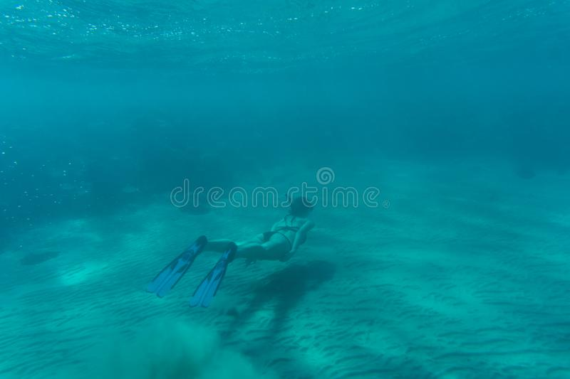 Beautiful woman underwater in Bikini snorkels over coral reef in the Sea stock images