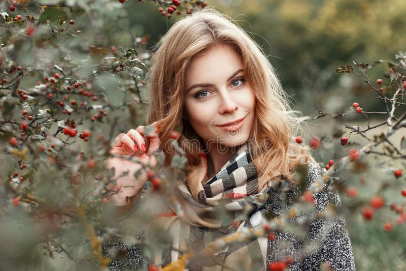 Beautiful woman in vintage knitted scarf posing near. A tree with berries. Autumn day stock photography