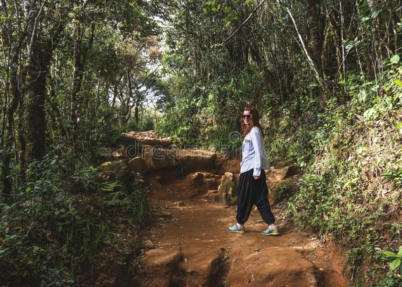 Beautiful woman walking on the path in the tropical forest stock photography