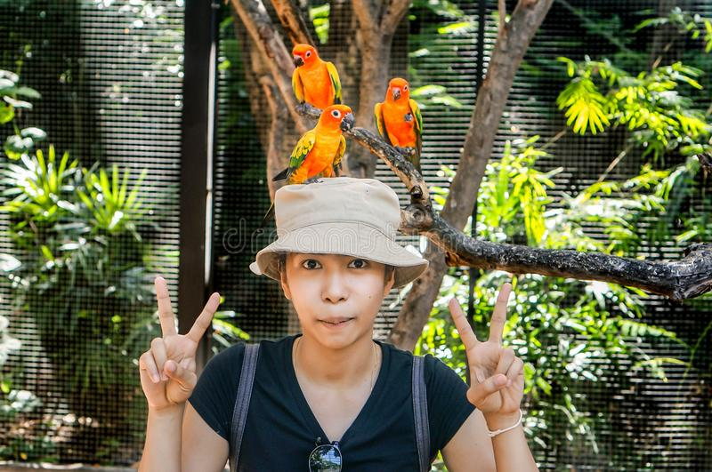 Beautiful woman wearing a hat with birds. royalty free stock photos