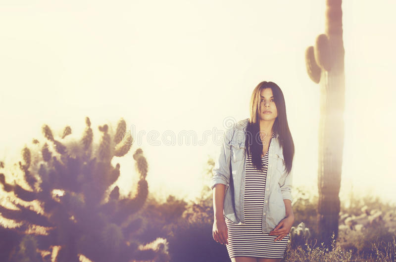 Download Beautiful Woman Wearing Lingerie Stock Photo - Image of saguaro, nature: 39502556
