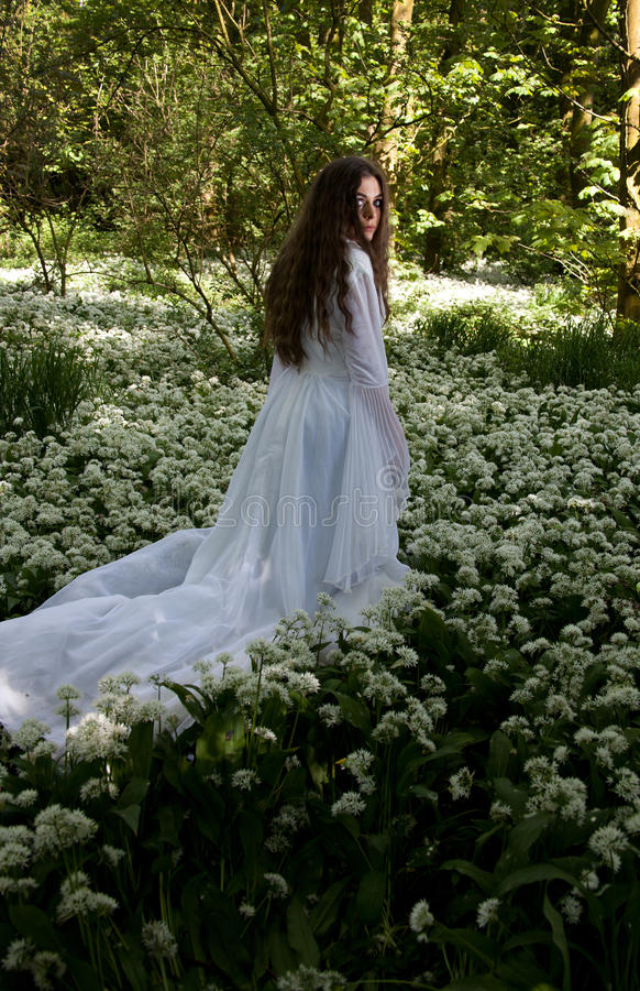 Beautiful woman wearing a long white dress in a forest stock image