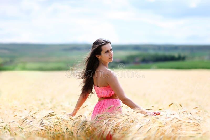 Beautiful woman in the wheat field stock image