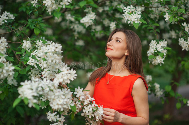 Beautiful woman in white spring blossom of apple trees.  royalty free stock photography