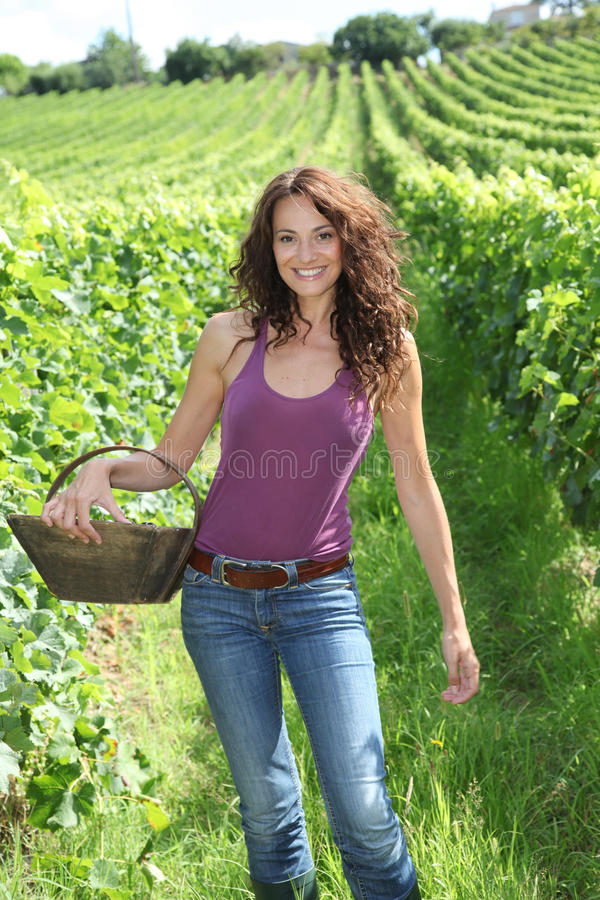 Download Beautiful Woman In Wine Rows Stock Image - Image: 15739705