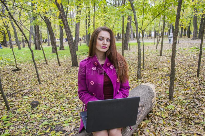 Beautiful woman working and writing letters on laptop in autumn park. stock photography